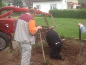 Büsche, Bäume und Wurzeln entfernen